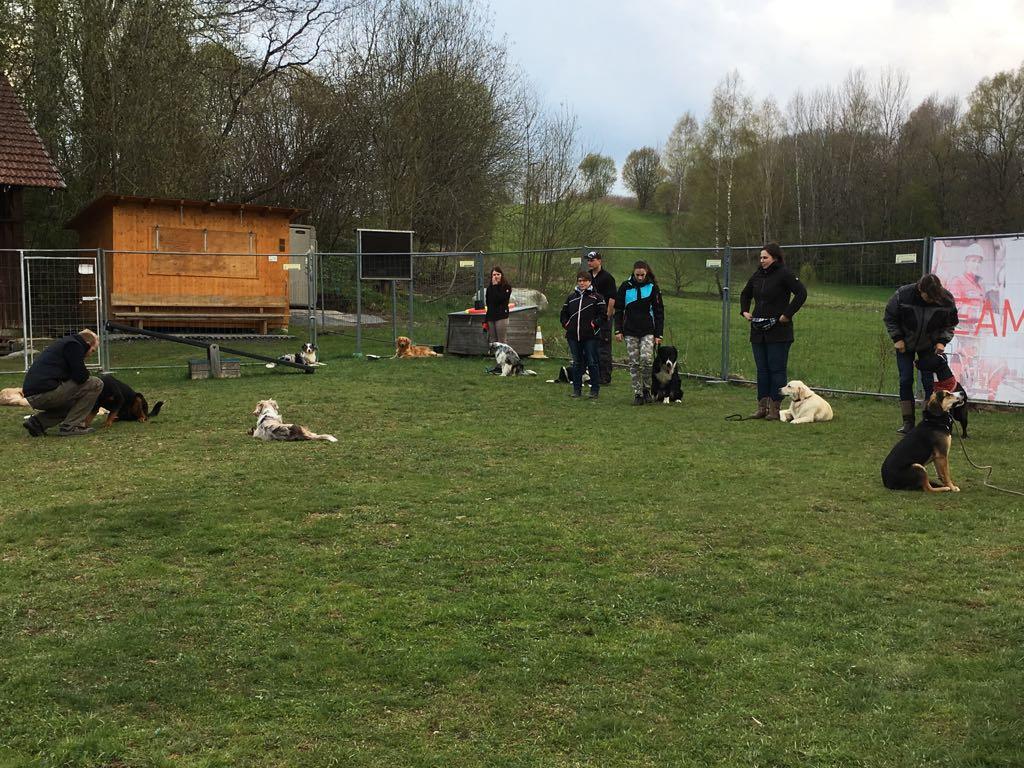 Hundeplatz (2)